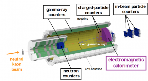 Figure 2: Schematic view of the detector system of the KOTO experiment. The neutral kaon beam enters from the left. The electromagnetic calorimeter in purple measures two gamma-rays from a neutral pion.