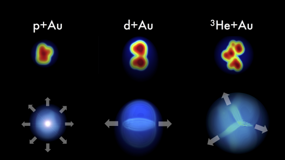 "If collisions between small projectiles—protons (p), deuterons (d), and helium-3 nuclei (3He)—and gold nuclei (Au) create tiny hot spots of quark-gluon plasma, the pattern of particles picked up by the detector should retain some ""memory"" of each projectile's initial shape. Measurements from the PHENIX experiment match these predictions with very strong correlations between the initial geometry and the final flow patterns. Credit: Javier Orjuela Koop, University of Colorado, Boulder"