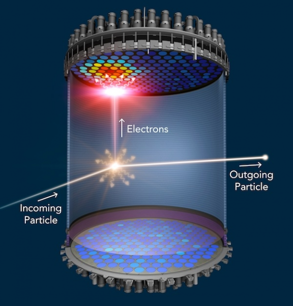 "Particles interact in the LZ detector and create flashes of light, which allows us to ""see"" them."