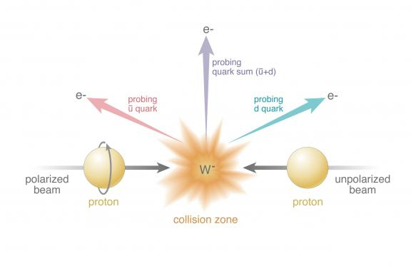 "Collisions of polarized protons (beam entering from left) and unpolarized protons (right) result in the production of W bosons (in this case, W-). RHIC's detectors identify the particles emitted as the W bosons decay (in this case, electrons, e-) and the angles at which they emerge. The colored arrows represent different possible directions, which probe how different quark flavors—e.g., an ""up"" antiquark (u) and a ""down"" quark (d)—contribute to the proton spin."
